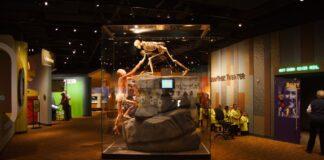 Health Expedition in Denver Colorado Museum