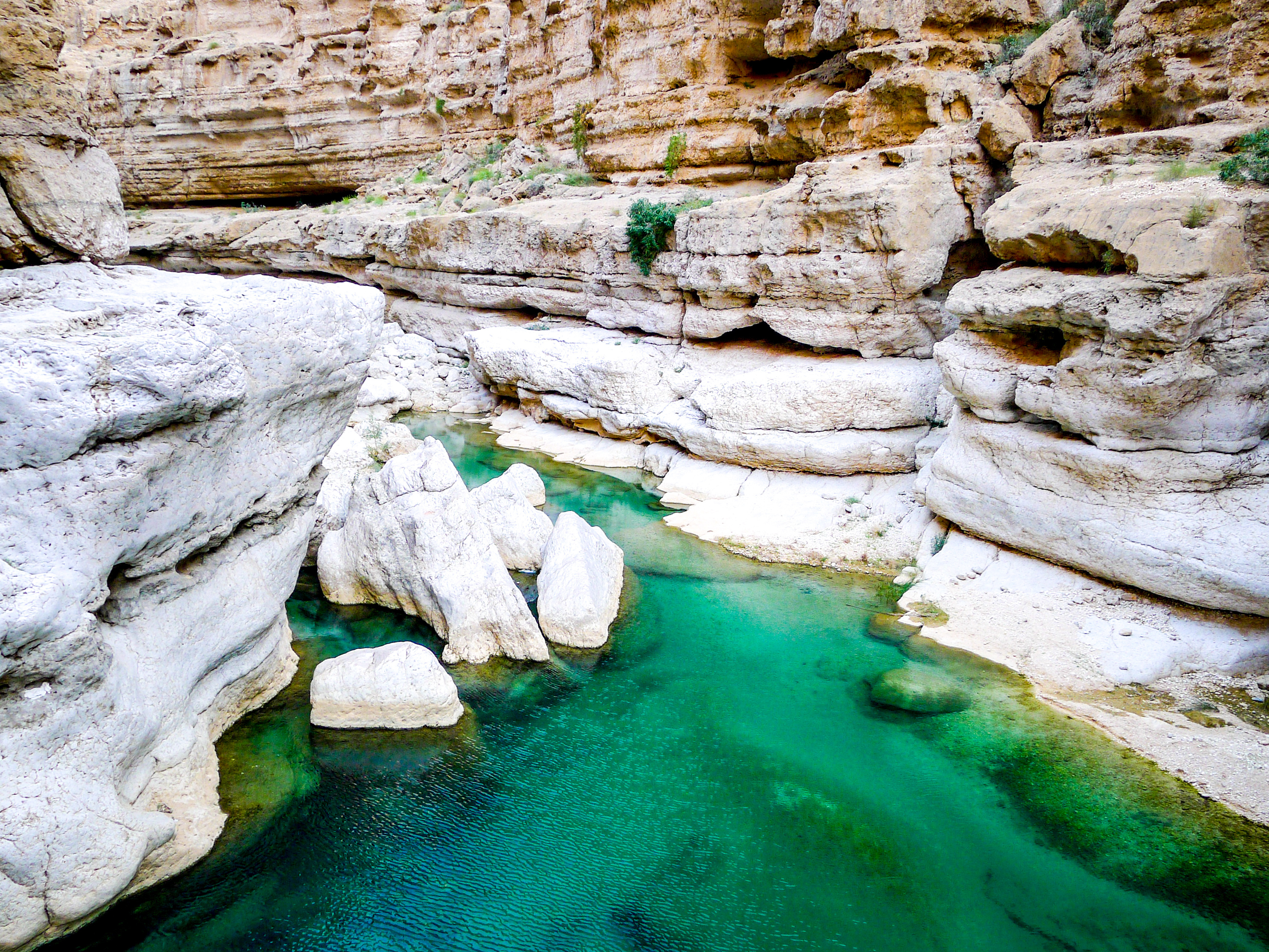 Turquoise blue waters of Wadi Shab, a canyon near Muscat in Oman