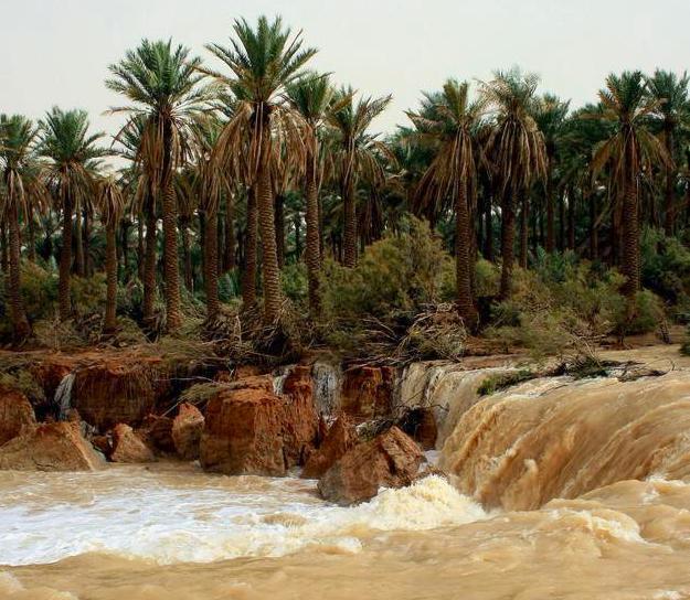 Wadi al-Rummah in Saudi Arabia