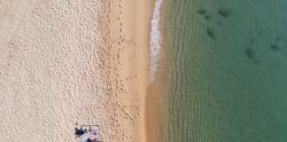 Sunbathing in the Brazilian Ocean