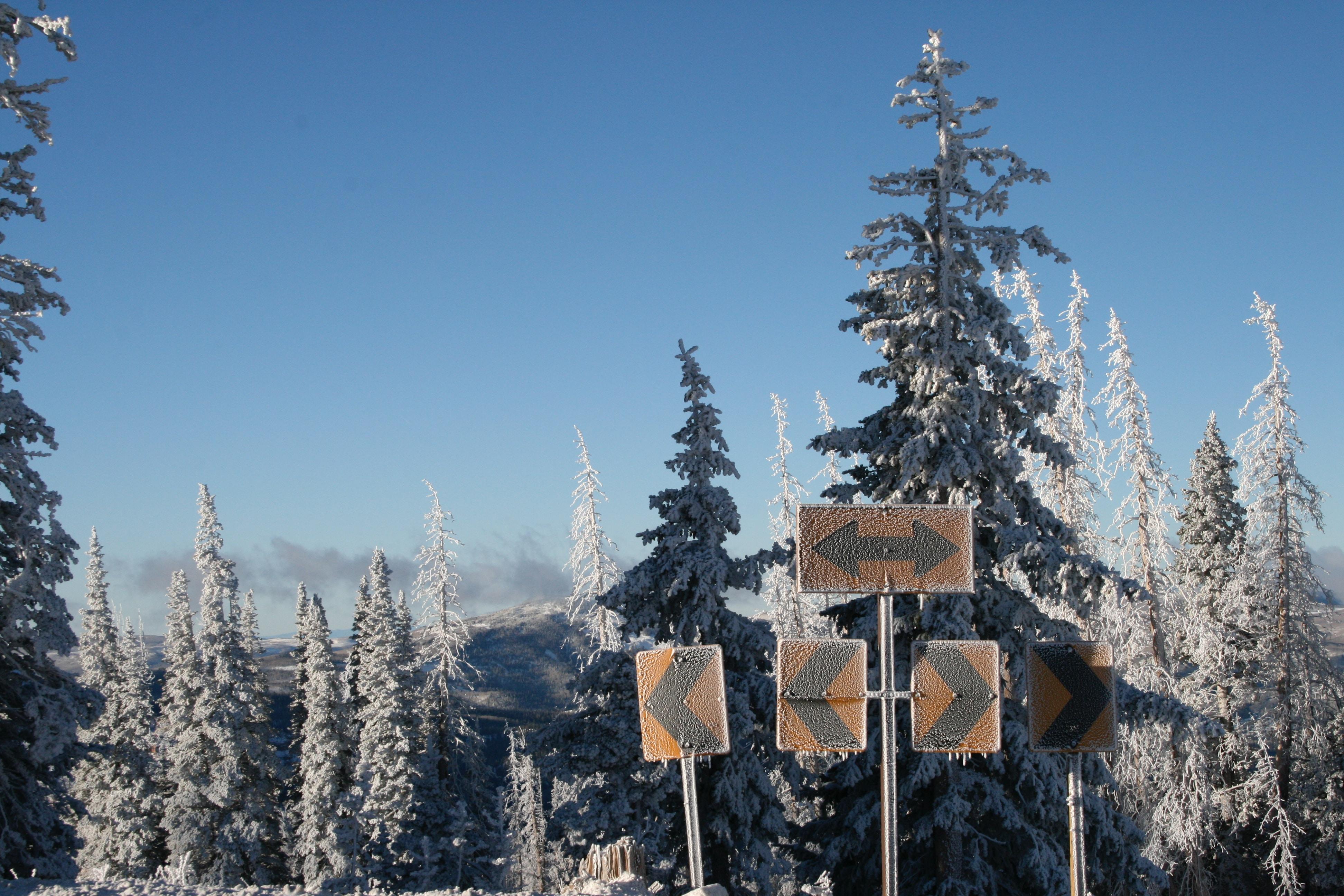 Winter in Cedar Breaks National Monument