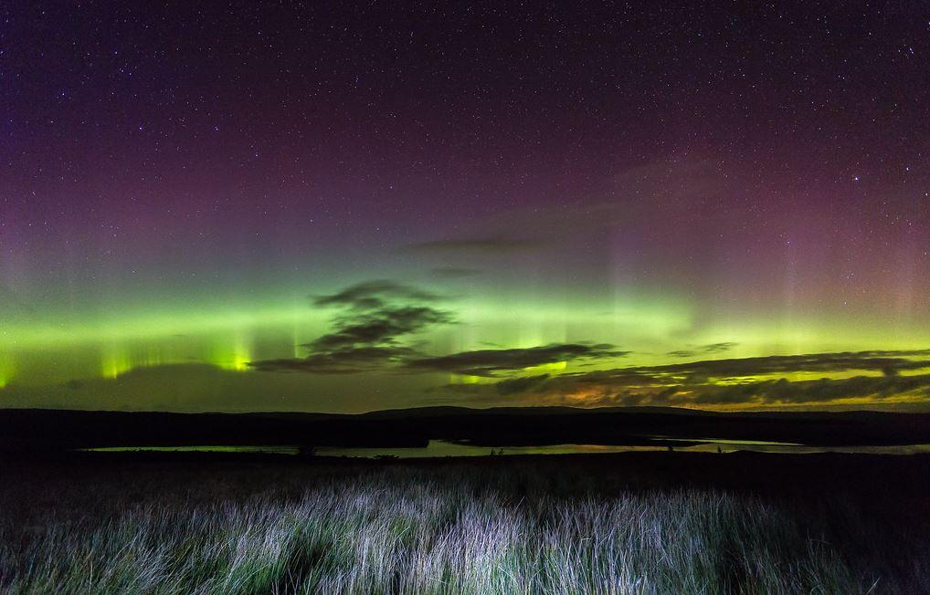 Northern Lights over a grass land.