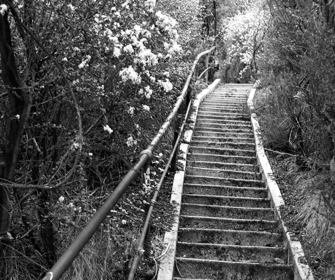 Black and white photo filter Murphy Ranch Stairs in Los Angeles
