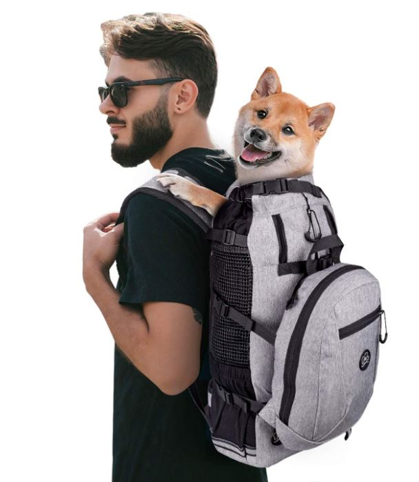 A guy wearing a gray backpack pet carrier with a brown dog inside.