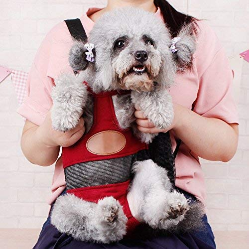 A girl carrying a gray dog inside a red pet carrier.